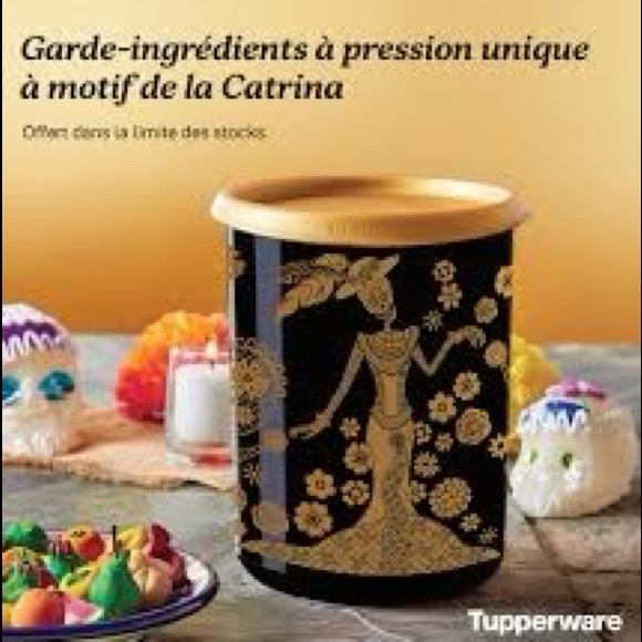 Tupperware One Touch Canister La Catrina